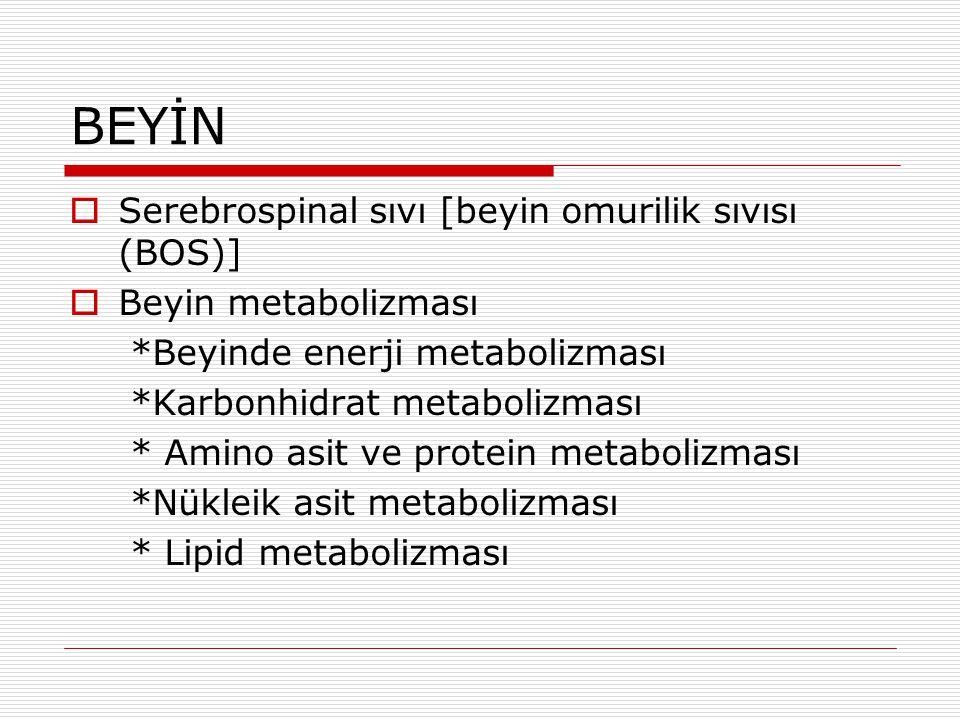 BEYİN Serebrospinal sıvı [beyin omurilik sıvısı (BOS)]